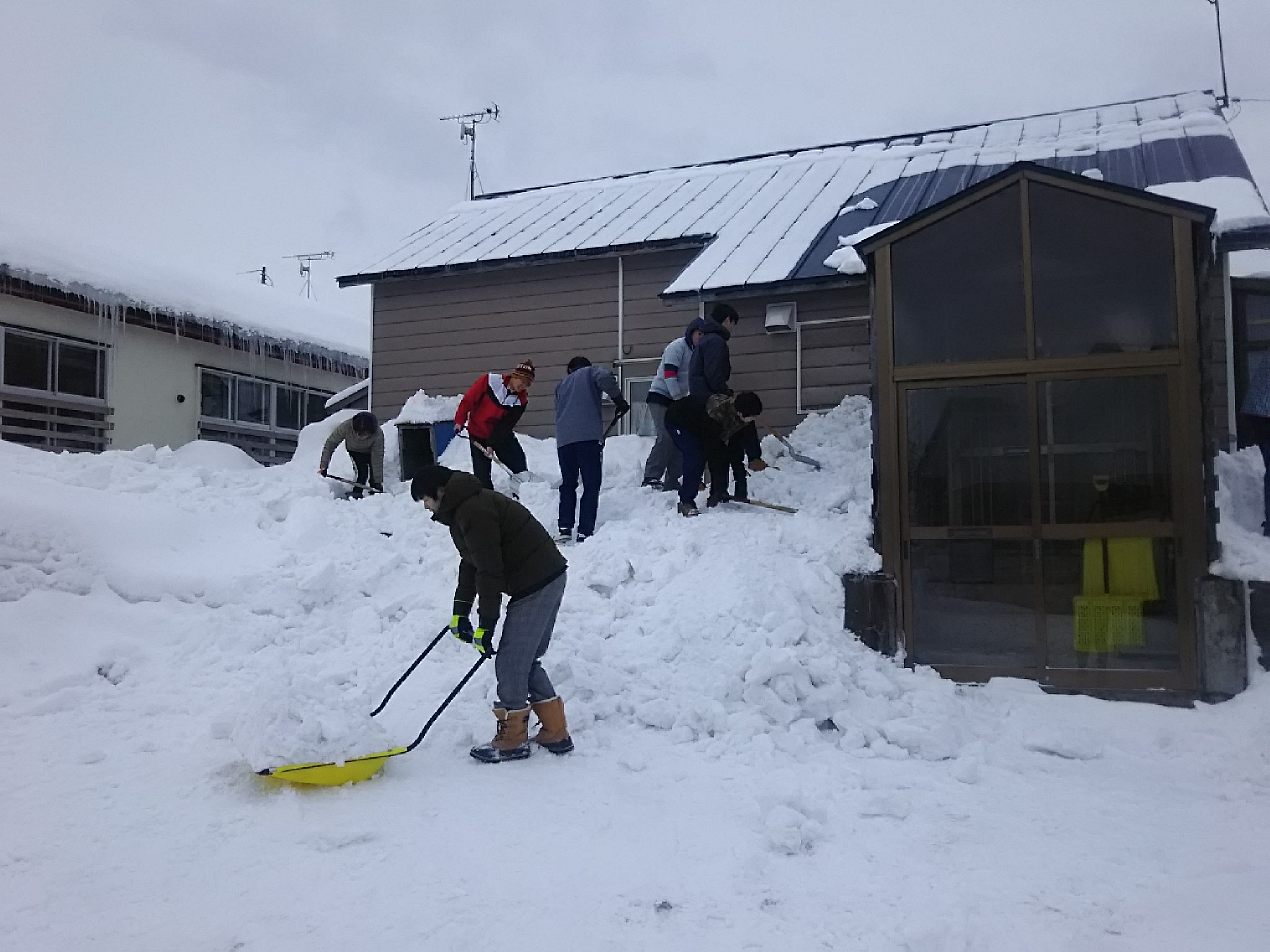 蘭越高校生除雪ボランティア活動実施